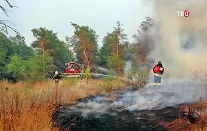 Для тушения степного пожара под Волгоградом привлекли авиацию