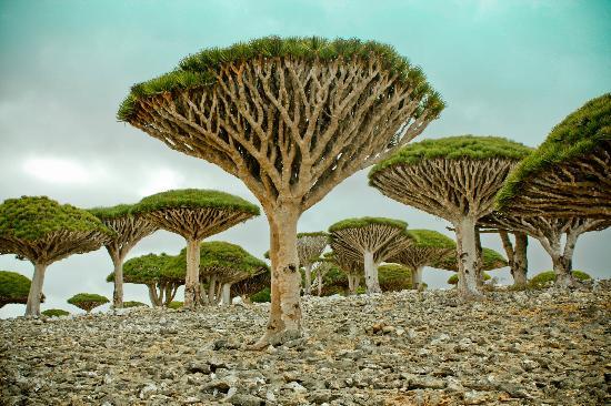 20 впечатляющих мест планеты Земля