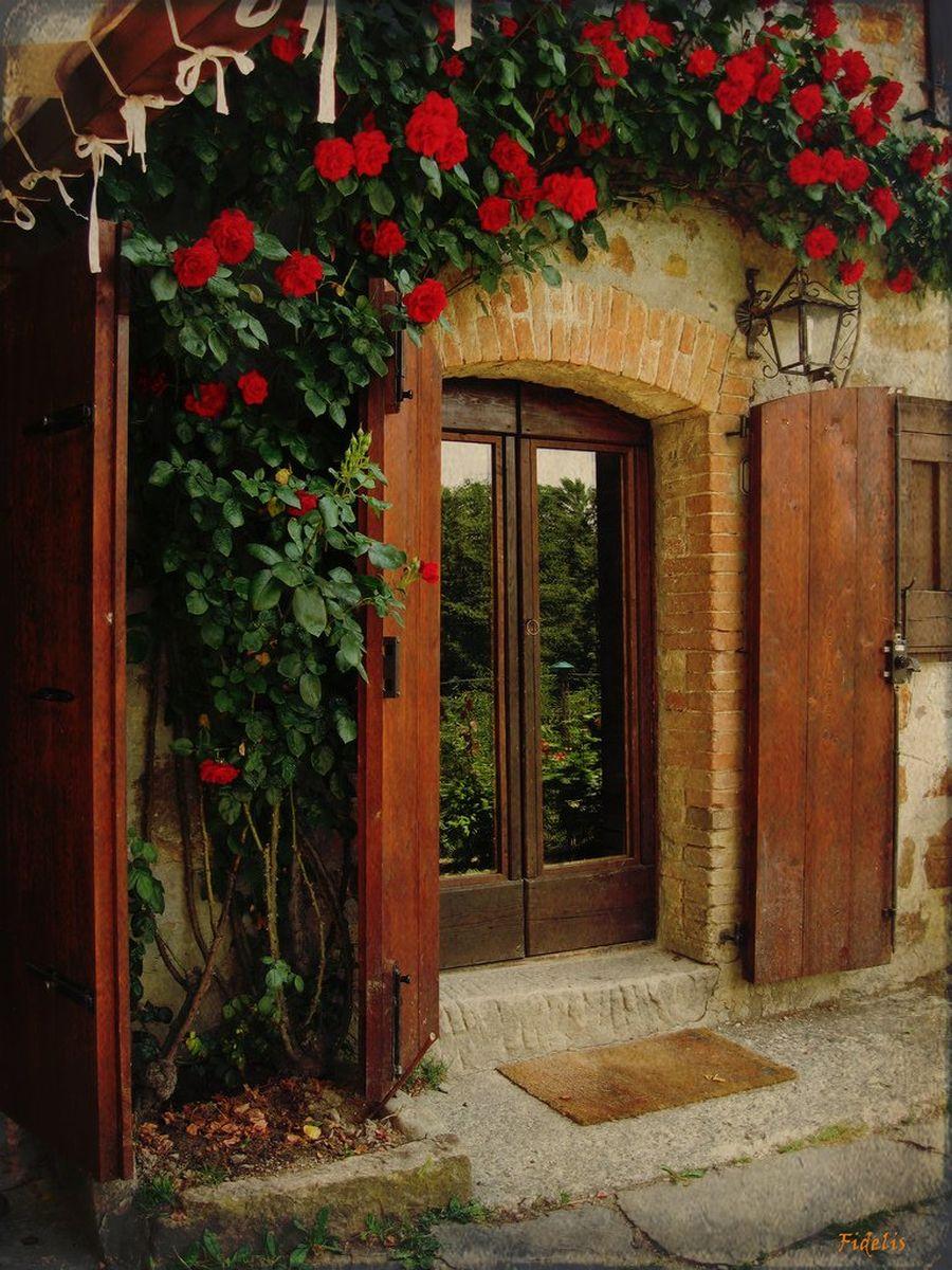 Цветы около двери фото