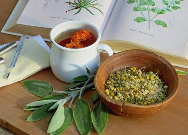 От семи недуг: натуральные средства от гриппа и простуды