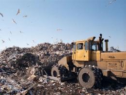 10 советов, которые помогут сохранить окружающую среду