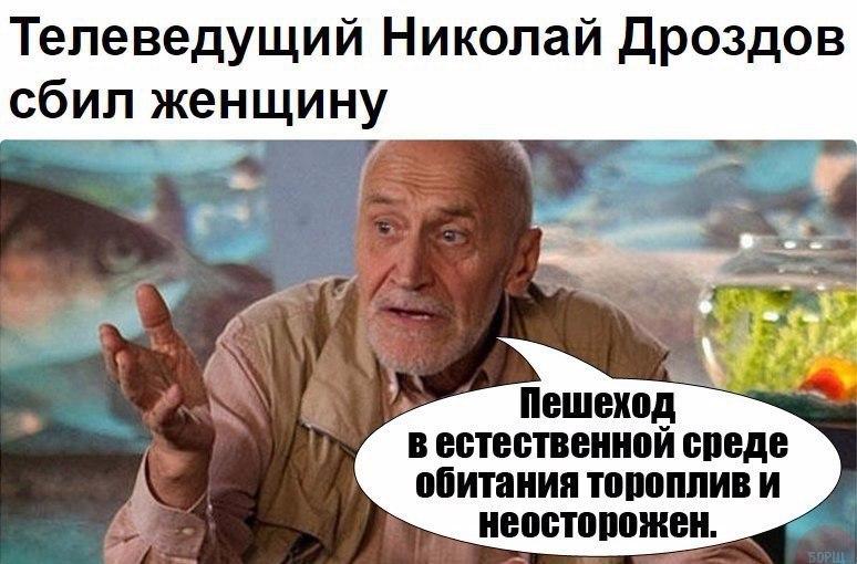 Телеведущий Николай Дроздов сбил женщину