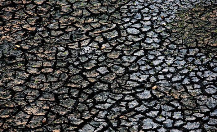 Беспрецедентная засуха в Палм-Бич