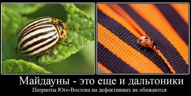 Русско Украинский Словарь