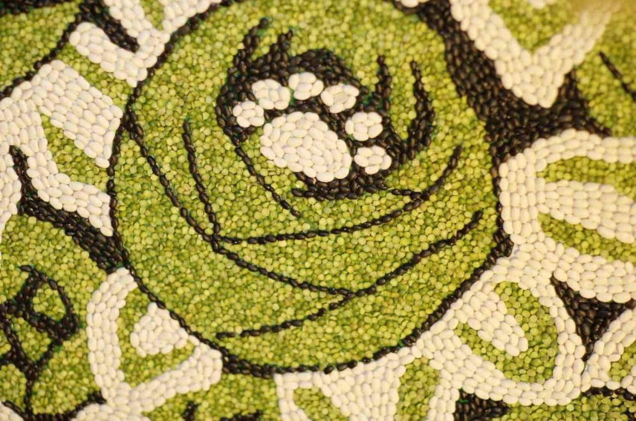 Аппликации и поделки из семян и круп 90 фотографий - Pinterest 60
