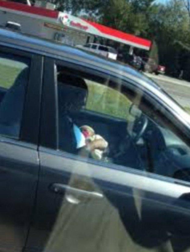 Судя по отсутствию детского сиденья, именно так девушка ведет машину дорога, путевые заметки, свидетельства, странности, странные люди, трасса, удивительное, фотографии