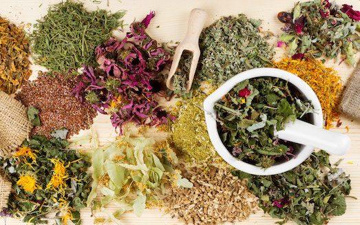 В борьбе с аллергией, чай — целебный спаситель