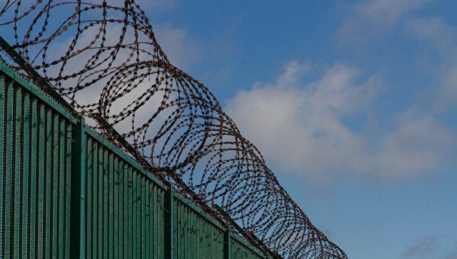 """""""Великая латвийская стена"""": На границе Латвии и России установили забор длиной 23 километра"""