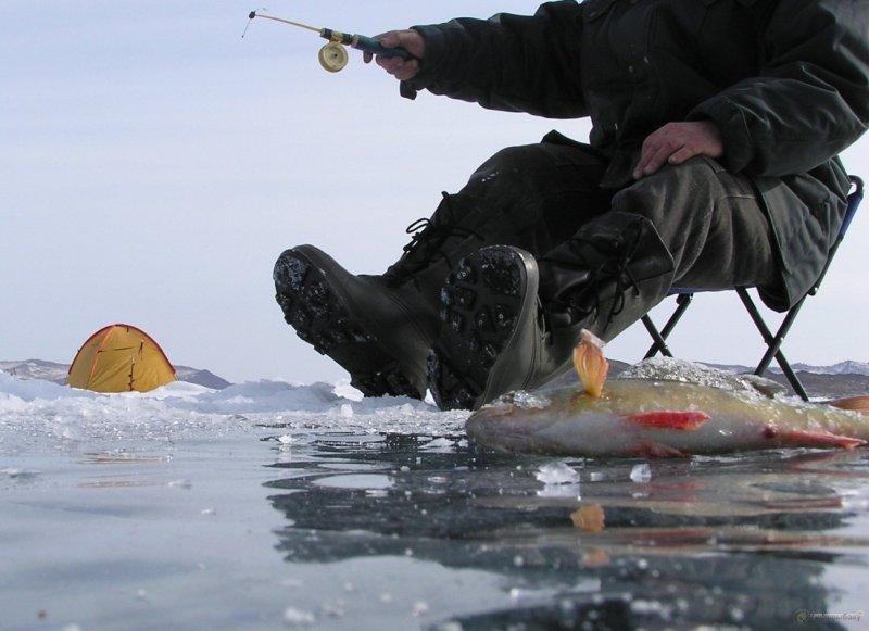 Пройти мимо было невозможно: рыбак из Красноярского края спас косулю от гибели