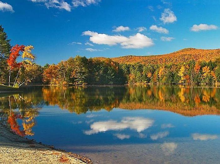 отражение в воде природа 16 (700x524, 369Kb)