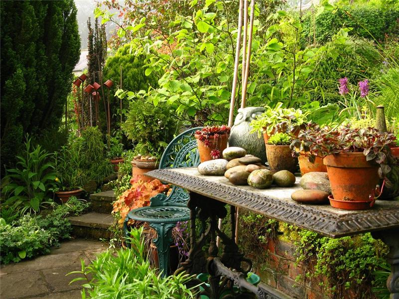 Дизайн сада старый сад