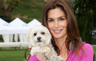 10 Celebrities Who Love Small Dogs
