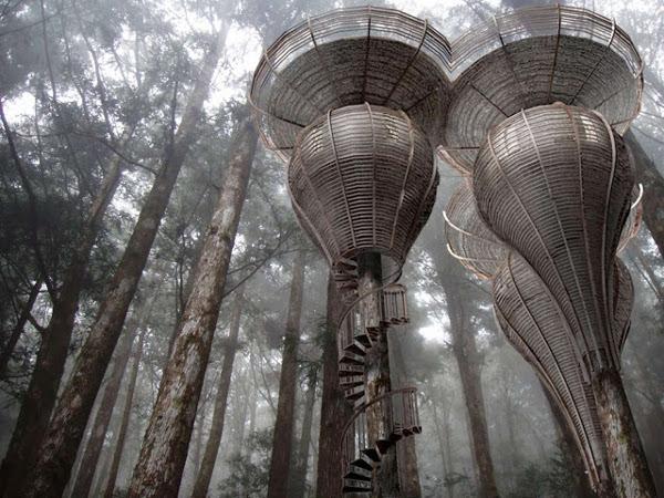 Зеленое строительство: экологический дом-шалаш на дереве