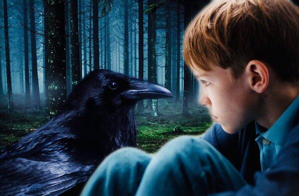 Ворон протянул крыло помощи мальчику, в благодарность за доброту и уход