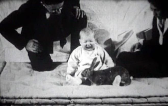 Ребенок и кролик