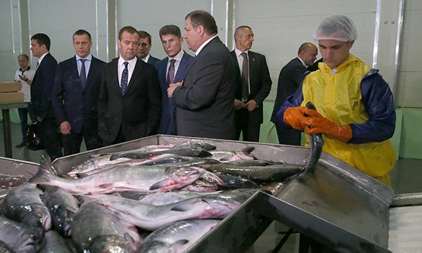 Глава Правительства РФ поручил наладить поставки дальневосточной рыбы по всей России