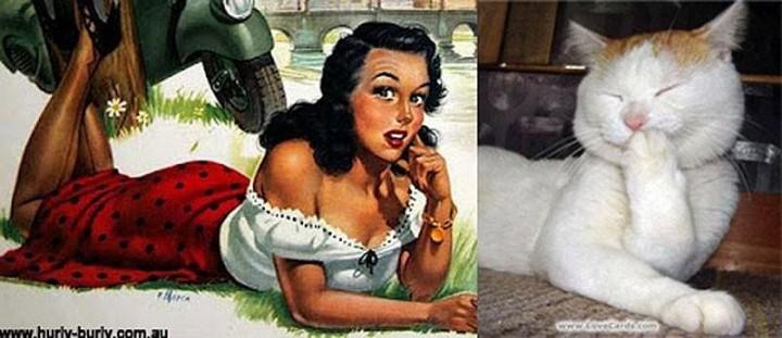 pinupcats05 Кошки и девушки в стиле пинап
