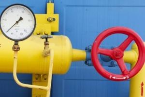 За реверсный газ Украина платит больше, чем могла бы платить России