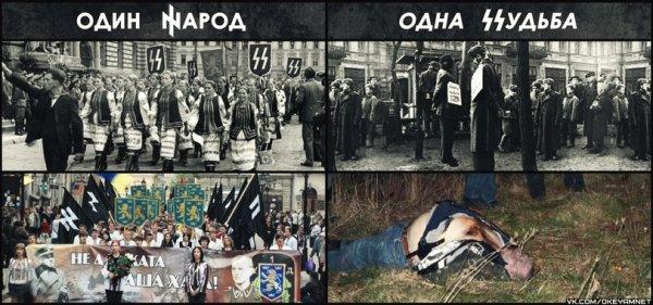 Строить Нацию или нацизм?
