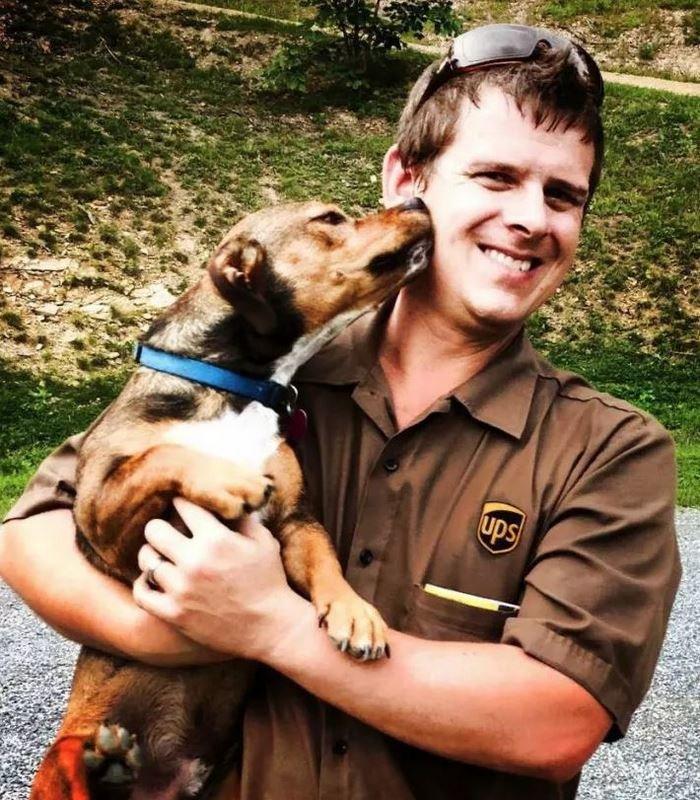 Собаки встречают почтальонов службы доставки
