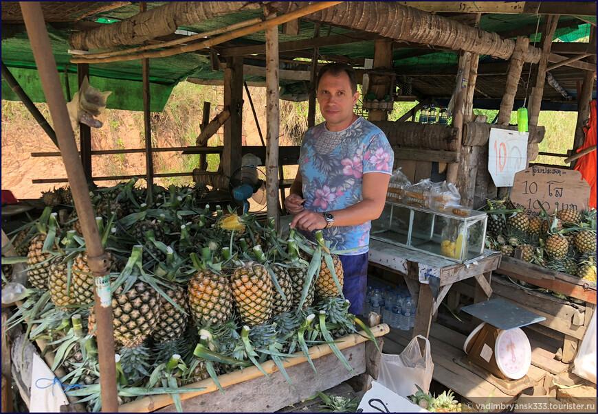 Остров Ко Самет— будущее без пластика. Экология превыше всего