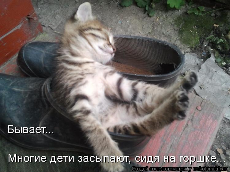 Котоматрица - Бывает... Многие дети засыпают, сидя на горшке...