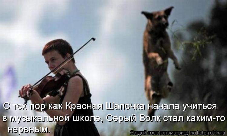 Котоматрица - С тех пор как Красная Шапочка начала учиться в  музыкальной школе, Серы
