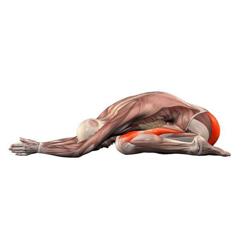 Упражнения, которые дают максимальный оздоровительный и омолаживающий эффект.