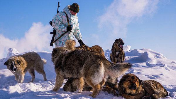 Российские военные заселили городок на арктическом острове Врангеля