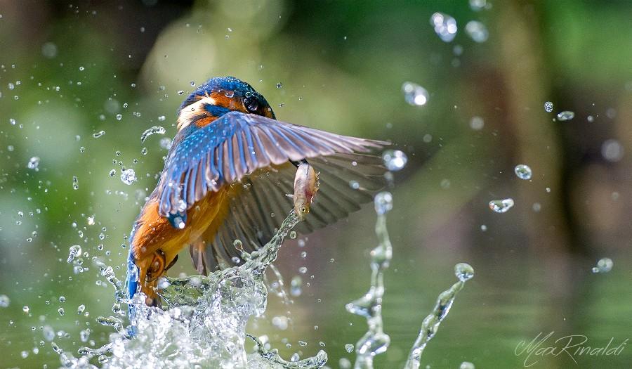 Лучшие фотографии природы за 2014 год на сайте 500px