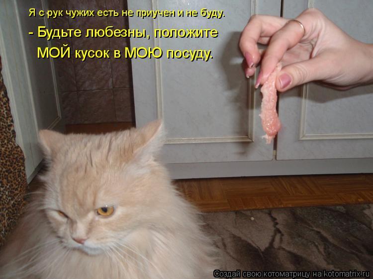 Котоматрица: - Будьте любезны, положите  МОЙ кусок в МОЮ посуду. Я с рук чужих есть не приучен и не буду.
