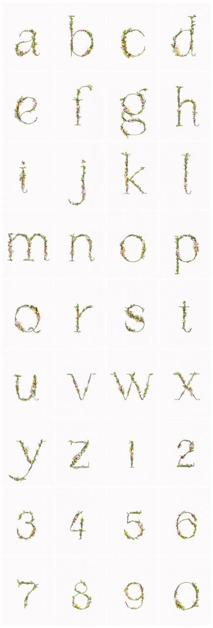 BLOSSOM TYPE - Алфавит из живых цветов