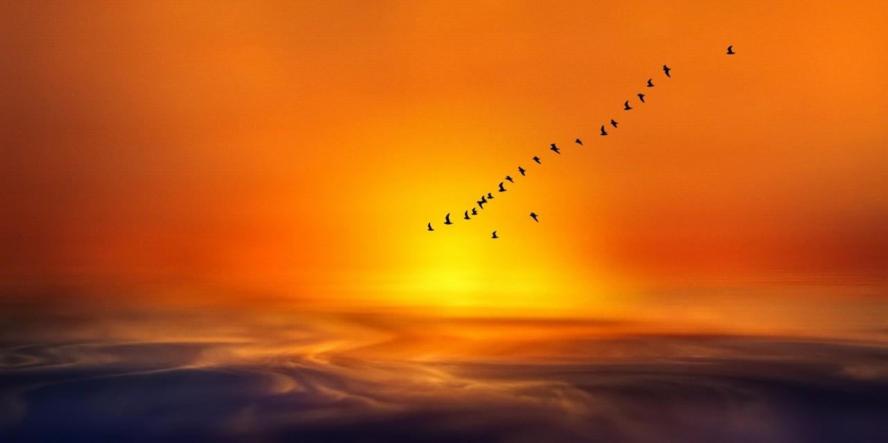 Фотография Flaming Ocean автор Josep Sumalla на 500px