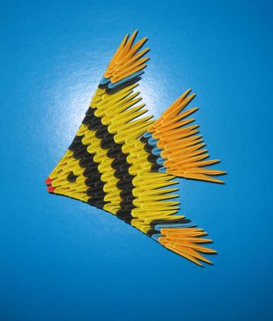 Модульные оригами рыбок схема сборки
