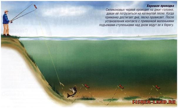 можно ли ловить с берега на спиннинг