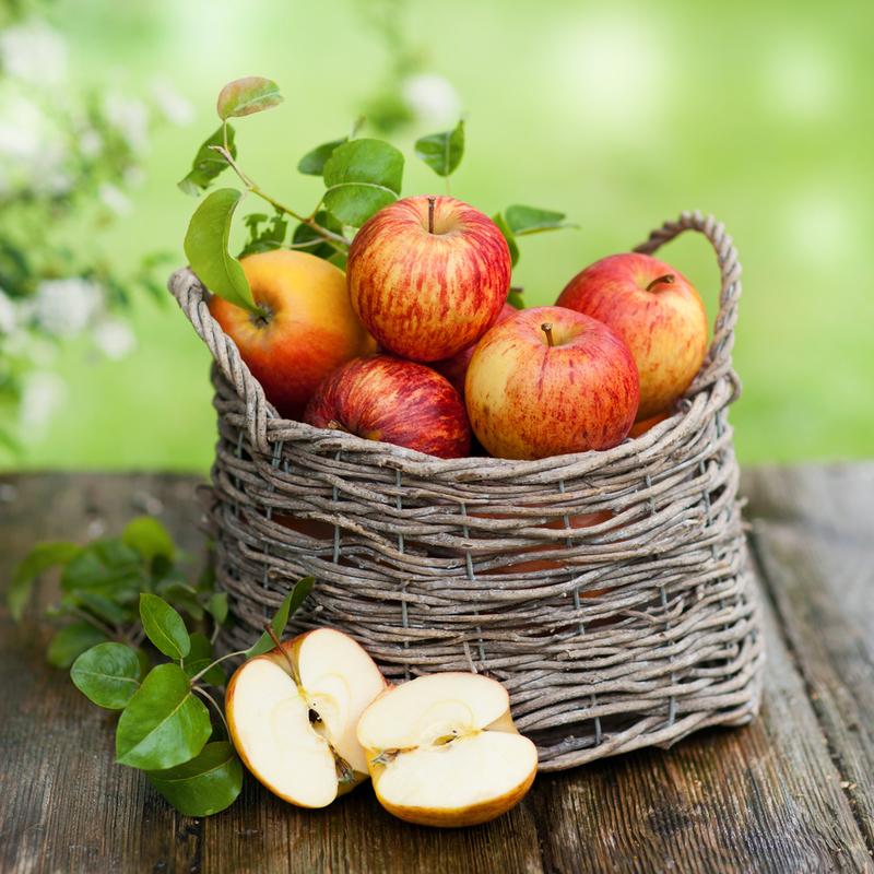 Что делать с урожаем яблок?