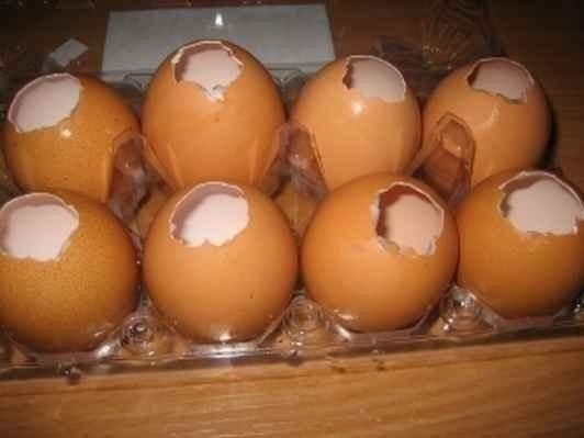 Заливные яйца! Отличная закуска на стол