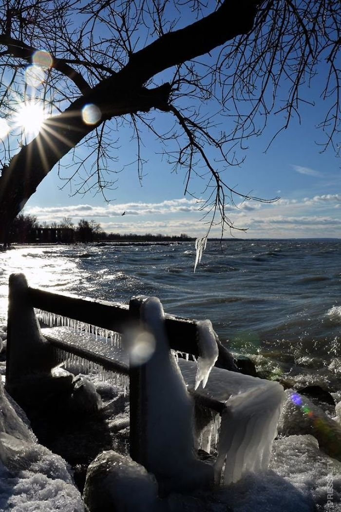 Озеро Балатон - зимняя страна чудес в фотографиях Сабо Золтана