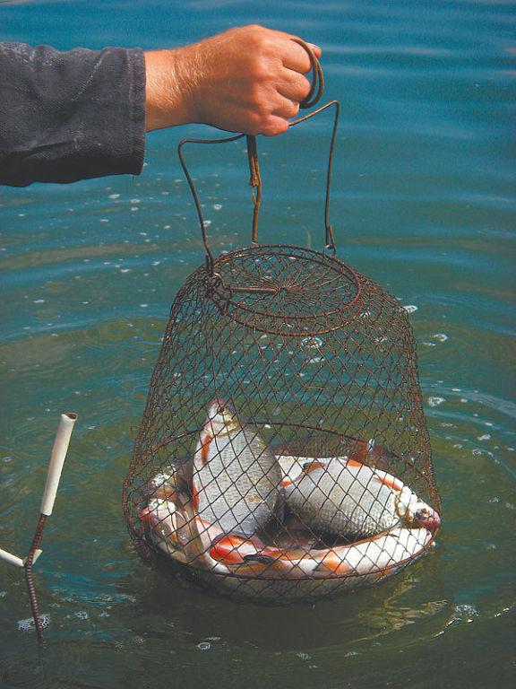 Рыбалка на разливах