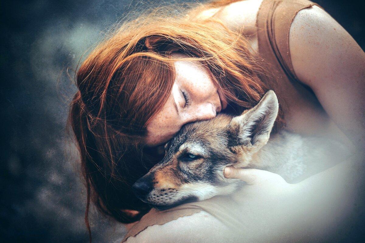 Волчонок отблагодарил слепую девушку за доброту: Как хищник стал защитником всей деревни?
