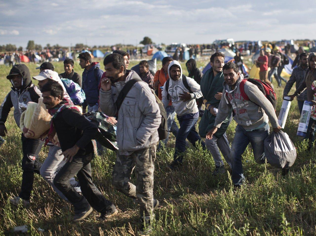Гигантская группа мигрантов проникла в США из Мексики по туннелям