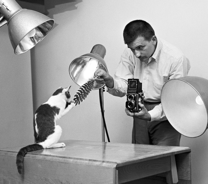 Уолтер Чандоха – человек, который 70 лет фотографировал кошек   1