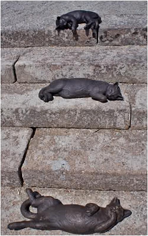 0038 Скульптуры и памятники кошкам