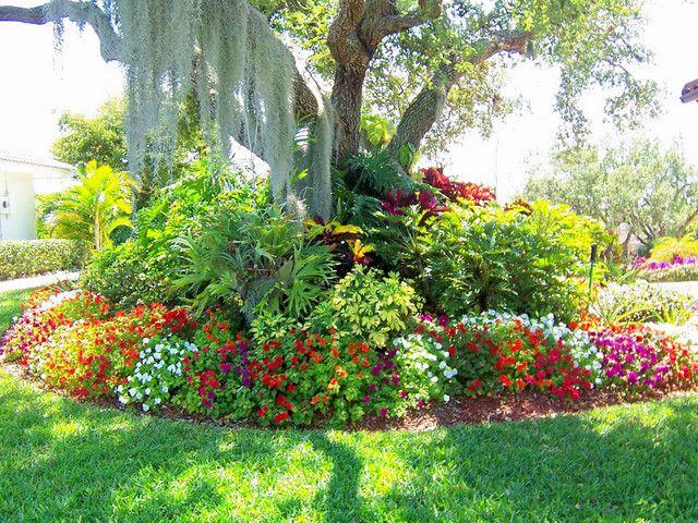Садовый цветы с названиями и фото для сада