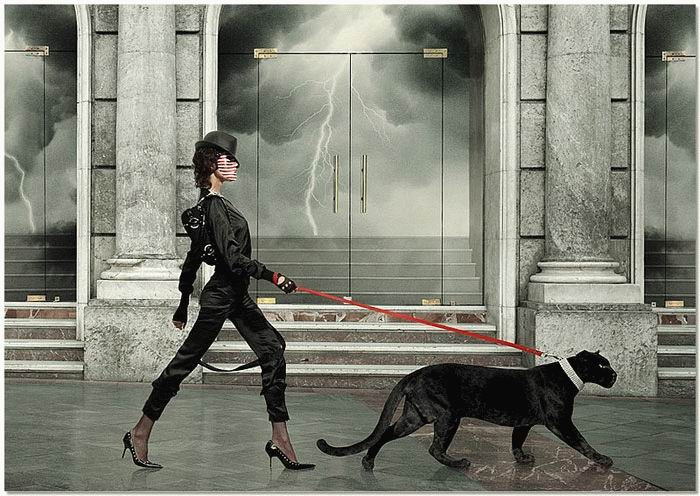 Женщина и кошка -фото - Женщина и кошка - Фотоальбомы - Котомания