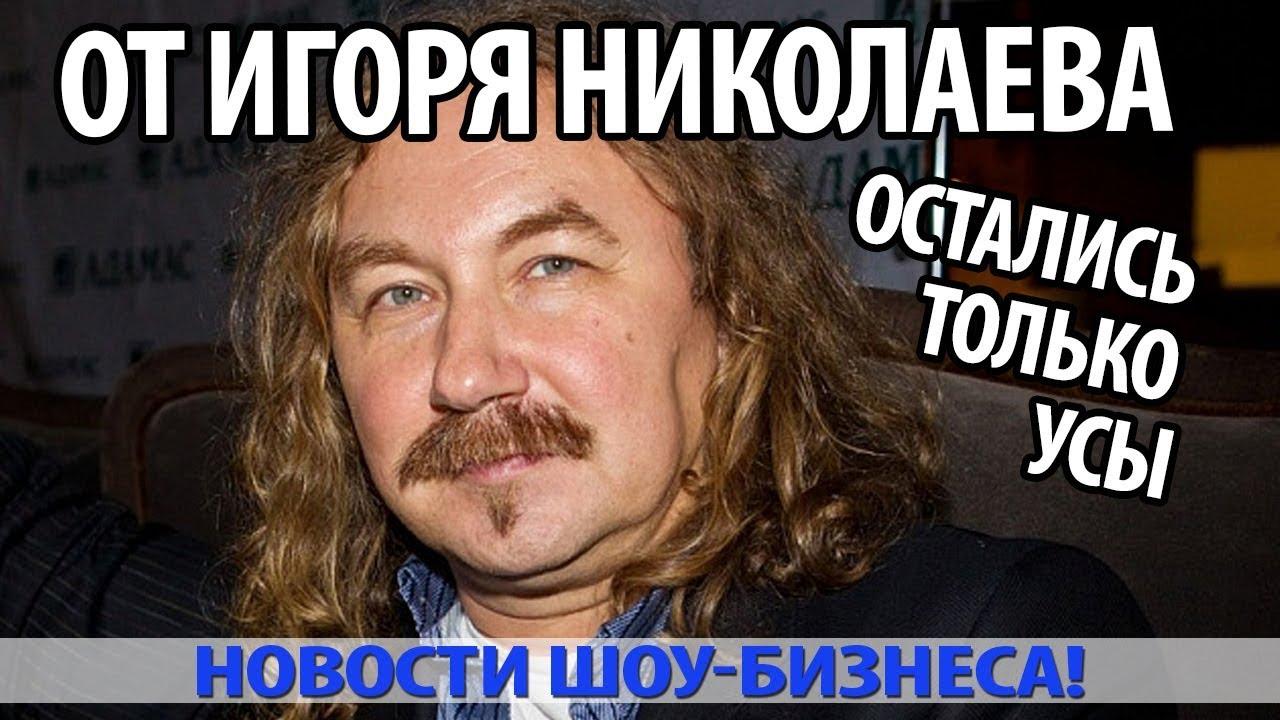 Картинки по запросу От Игоря Николаева остались только усы