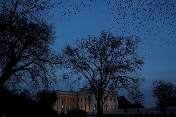 Вашингтон нашел вредителей х…