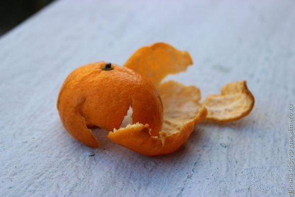 Кожура мандарина для похудения 111