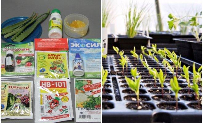Разбираемся в стимуляторах и регуляторах роста растений