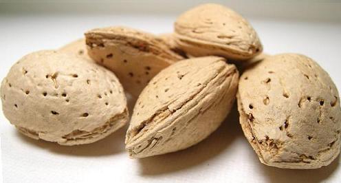 польза и вред ореха миндаля